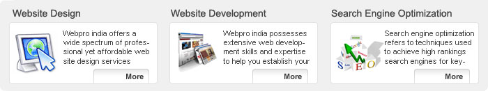 web design delhi, web designing delhi, website design company delhi, web promotion india